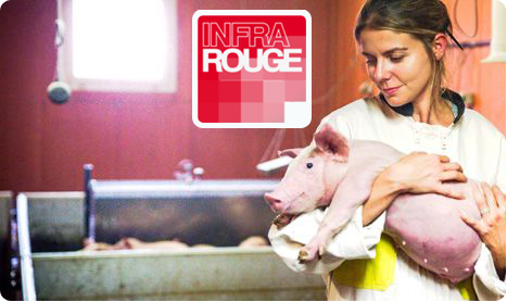 [MULTI] Une Vie de cochon [FRENCH] [TVRIP]