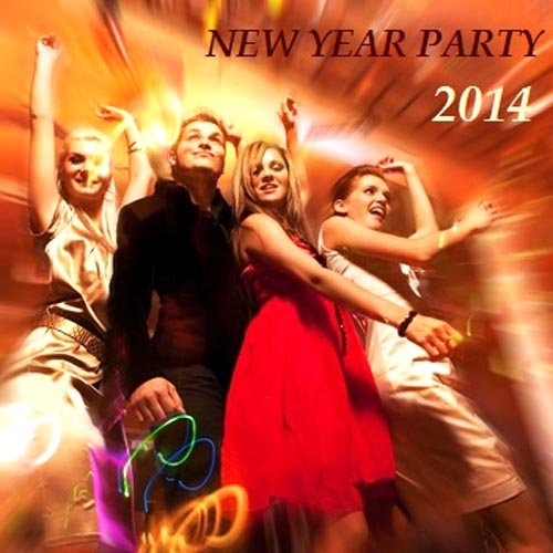 New Year Party 2014 [Multi]