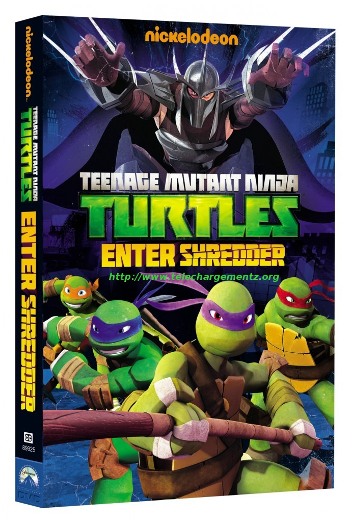 TEENAGE MUTANT TURTLES: ENTER SHREDDER