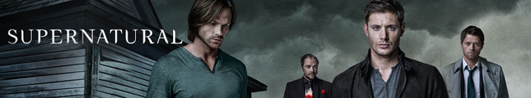 Supernatural S10E21 720p HDTV X264-DIMENSION