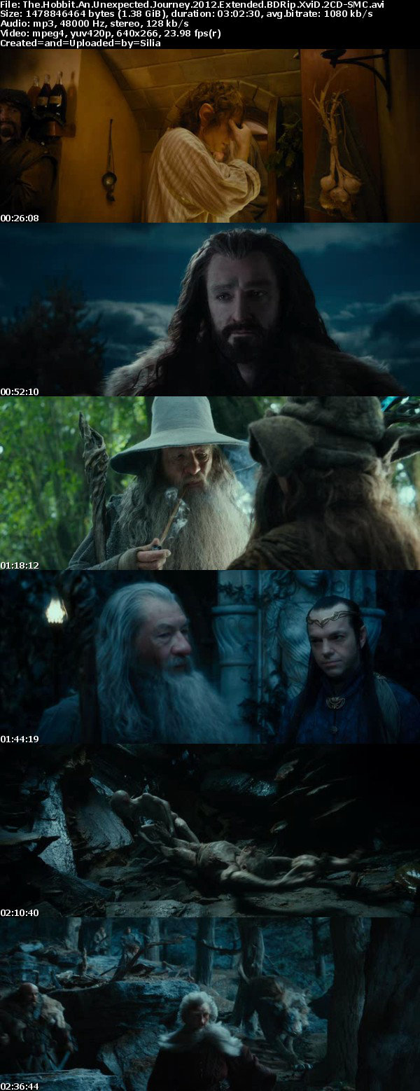 The Hobbit An Unexpected Journey 2012 Extended BDRip XviD 2CD-SMC