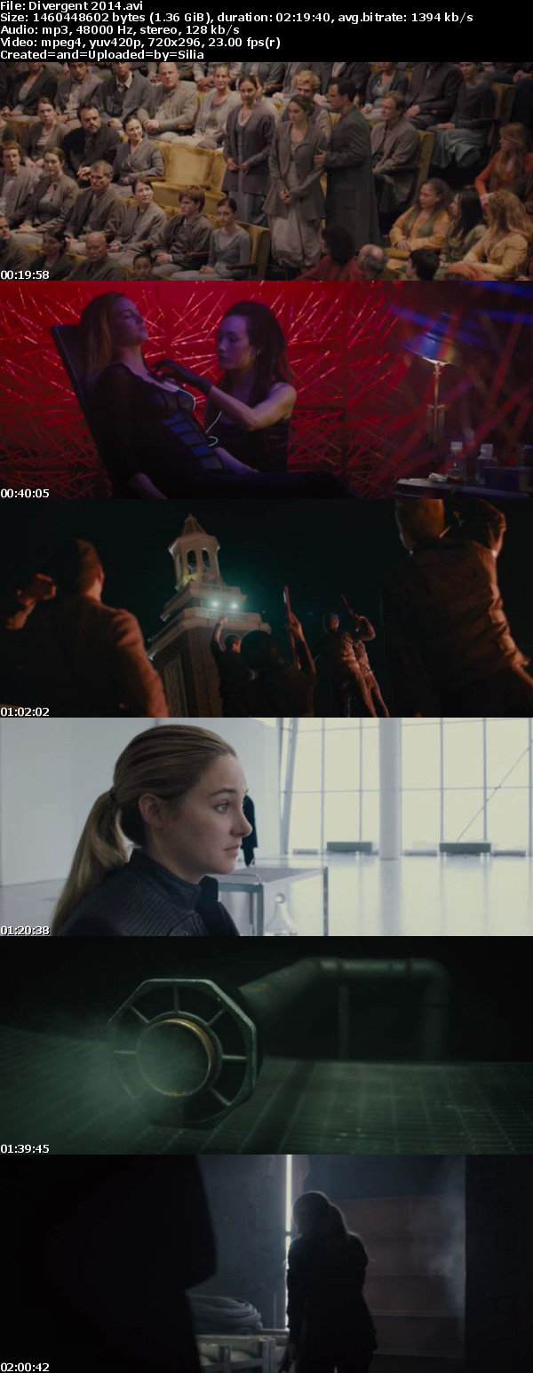 Divergent 2014 RETAIL HDRip Xvid-CRYS