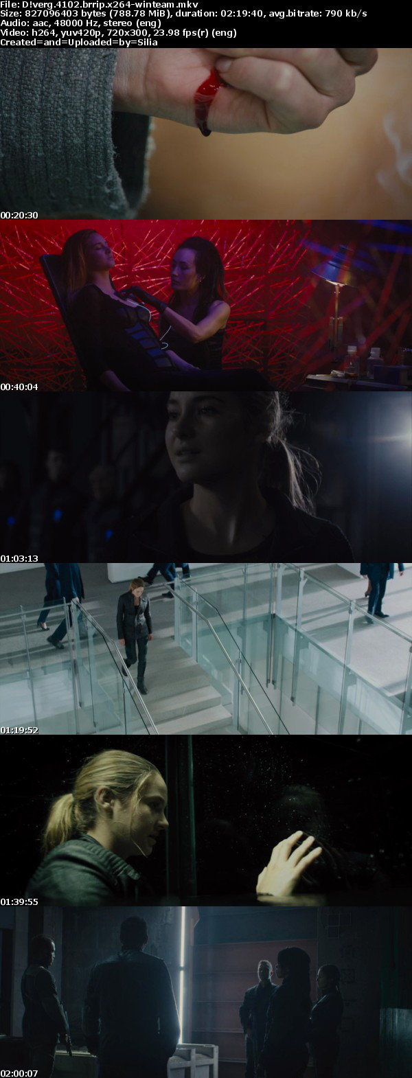 Divergent 2014 BRRip x264-WiNTeaM