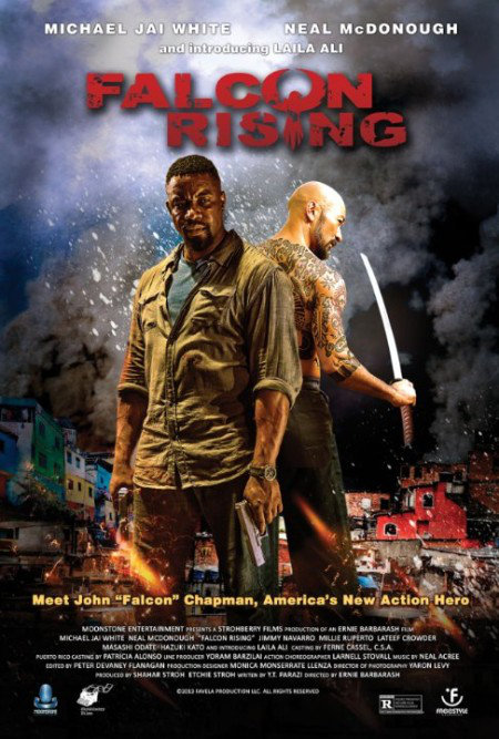 Falcon Rising 2014 LIMITED 480p BluRay x264-mSD