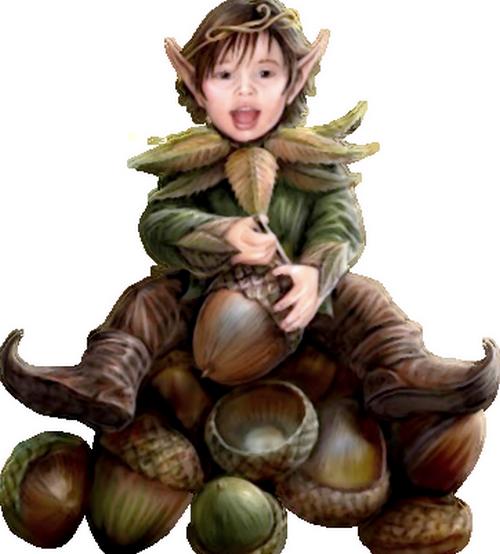 """"""" Petit Elfe """" Wx86"""