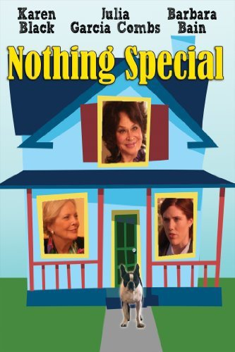 Nothing Special 2010 BDRip x264-VoMiT