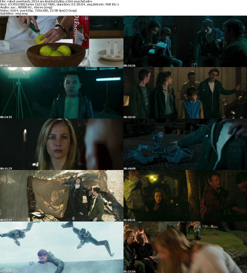 Robot Overlords (2014) WS LIMITED BDRip x264-PSYCHD