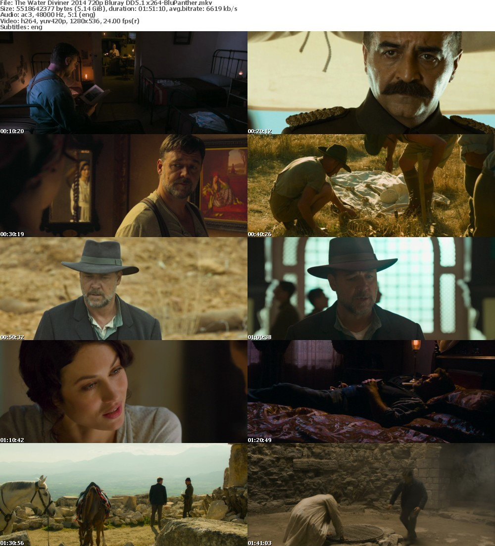 The Water Diviner 2014 720p Bluray DD5 1 x264-BluPanther
