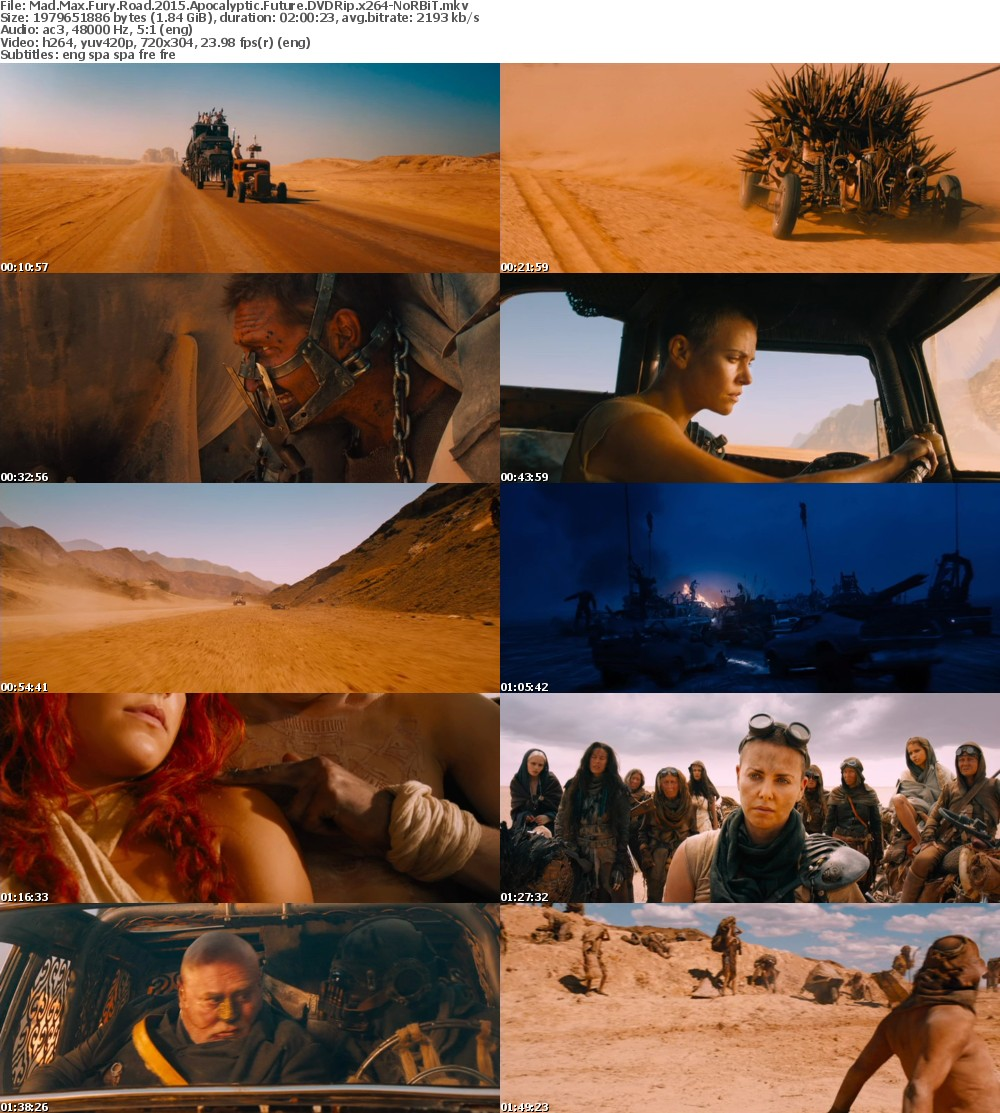 Mad Max Fury Road 2015 Apocalyptic Future DVDRip x264-NoRBiT