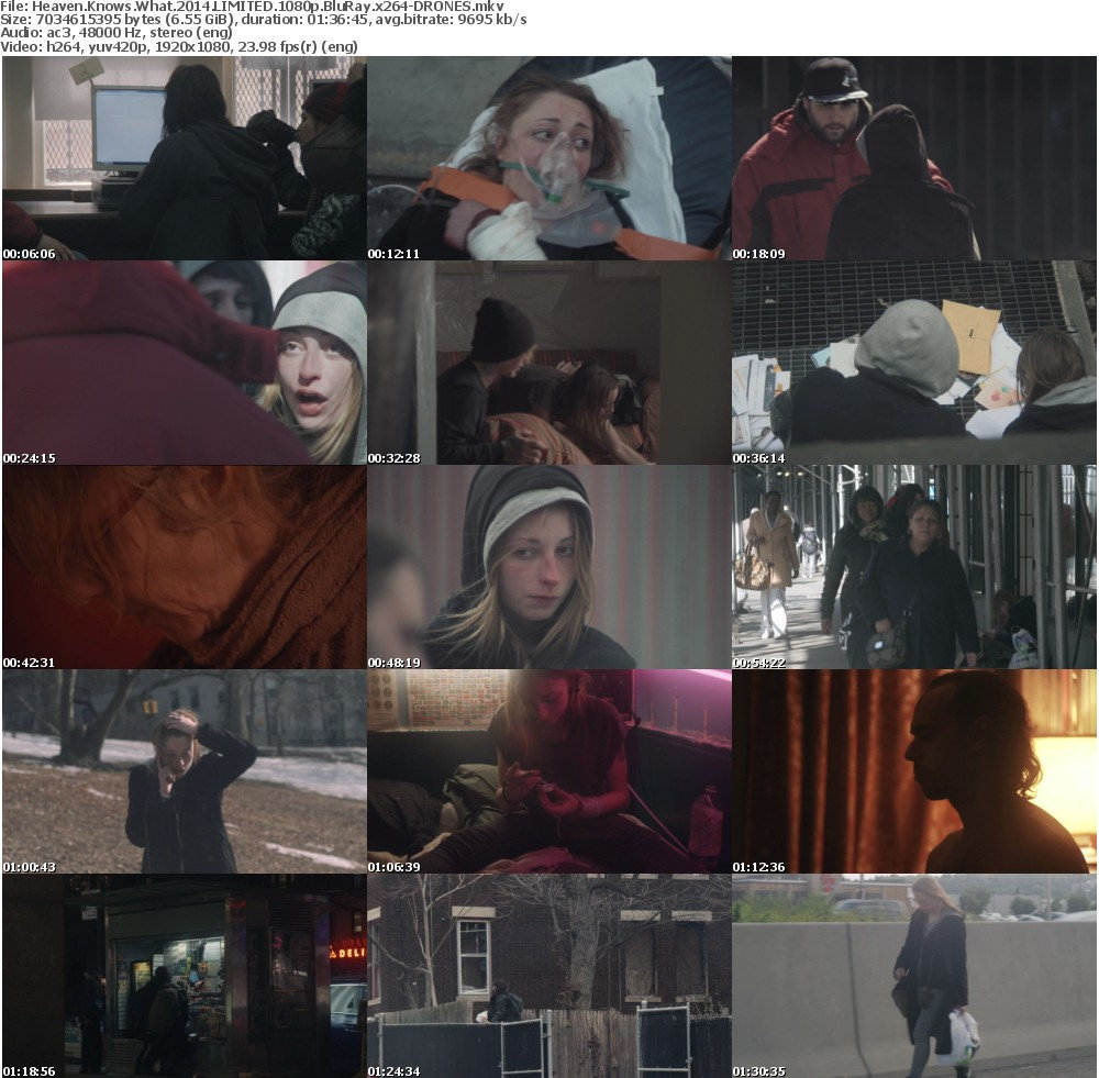 Heaven Knows What 2014 LIMITED 1080p BluRay x264-DRONES