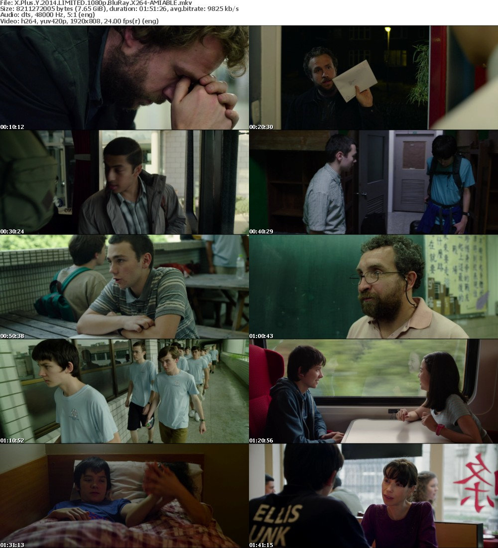 X Plus Y (2014) LIMITED 1080p BluRay X264-AMIABLE