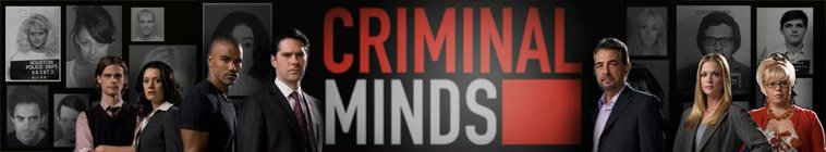 Criminal Minds S11E03 XviD-AFG