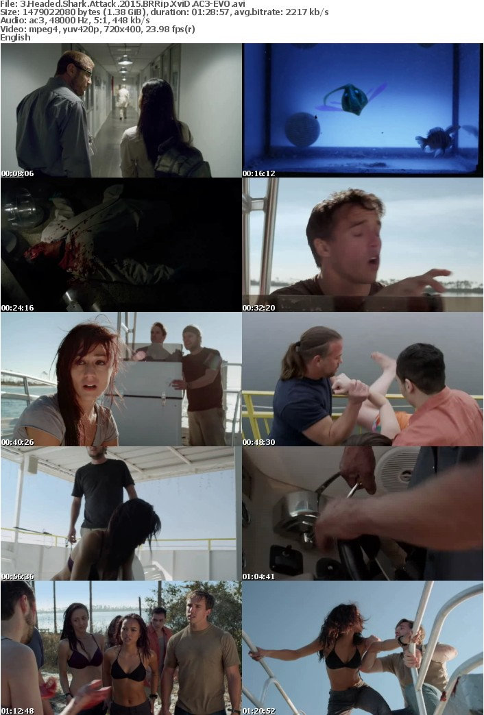 3 Headed Shark Attack 2015 BRRip XviD AC3-EVO