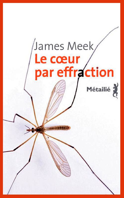 James Meek - Le coeur par effraction