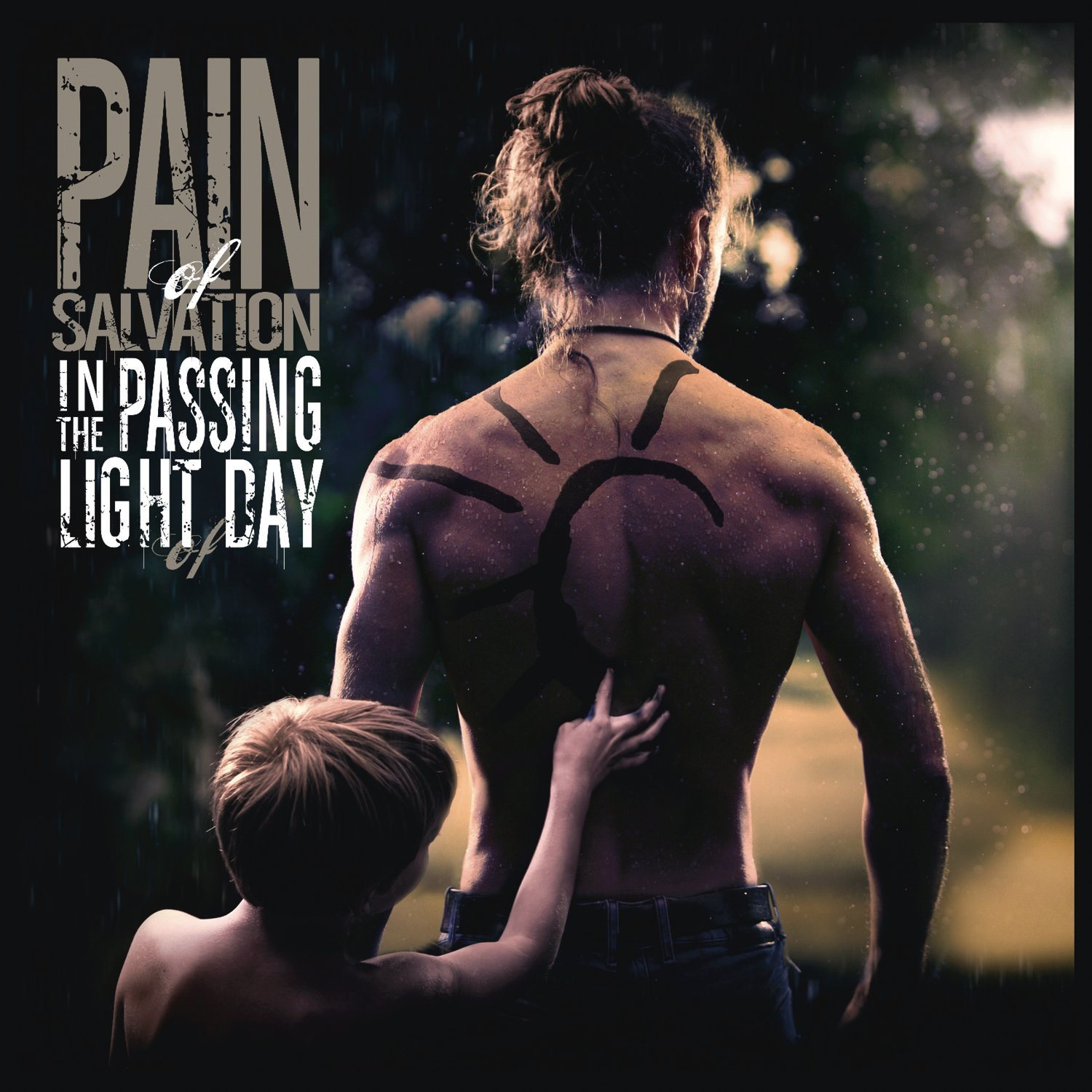 Pain Of Salvation : In The Passing Light Of Day