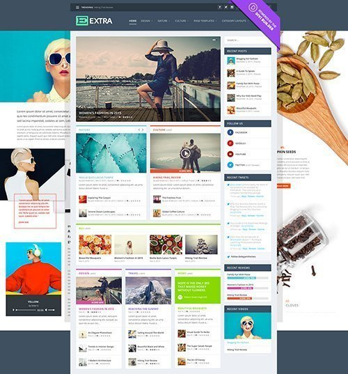 ElegantThemes - Extra v2.0.25 - WordPress Theme