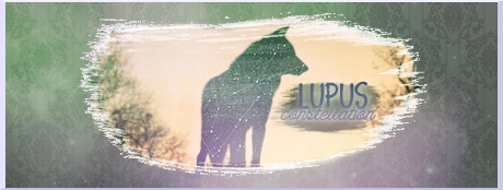 [Photoshop - Tout niveau] Constellation Lupus Rrsh