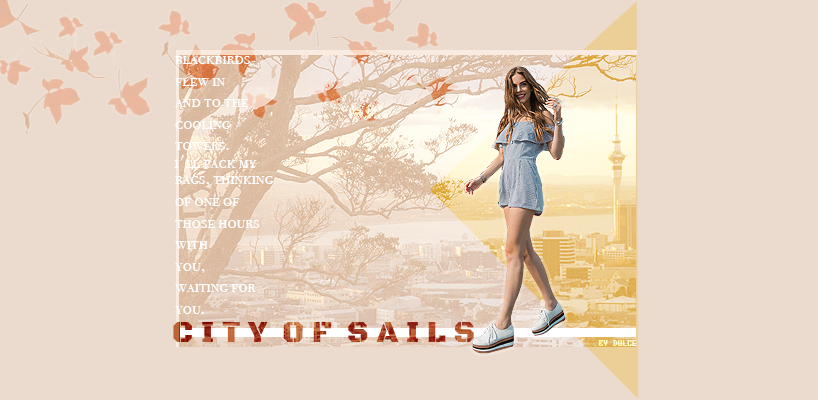 City Of Sails