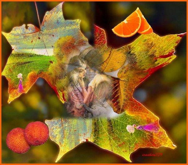 -----------------------------------------------------------------------------------------------------------joli emploi de feuille d'automne. dans divers vusi