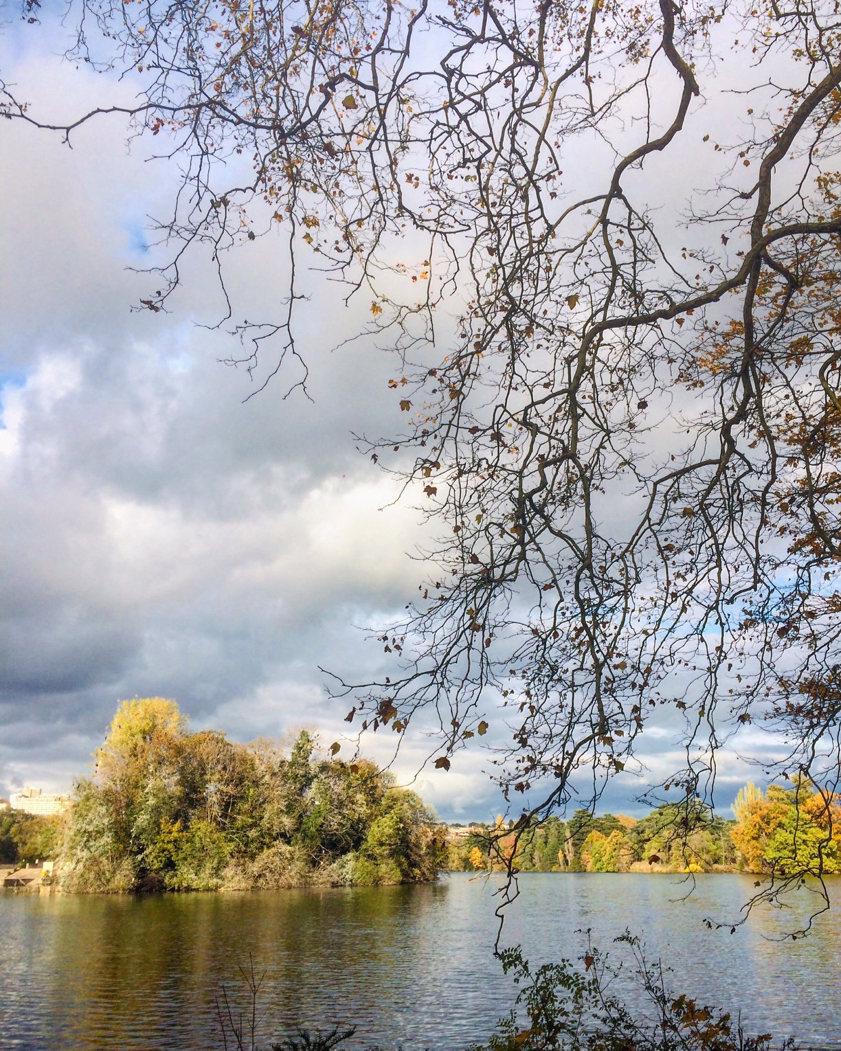 Parc de la tête d'or à Lyon, photo du Lac