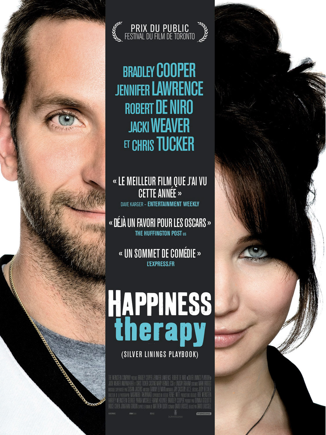 Happiness Therapy (2013)  [DVDSCR] Vostfr  (AC3)