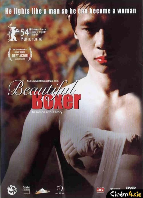 Fighting beauty | MULTI | DVDRiP | FRENCH