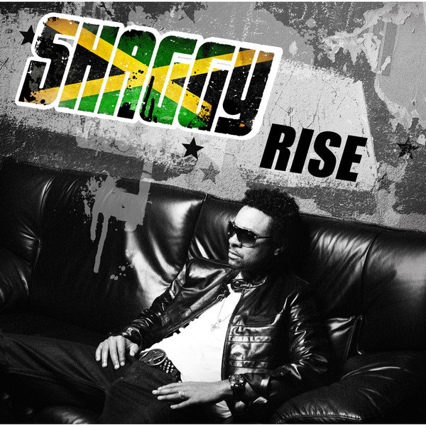 Shaggy - Rise (2012) [Multi]