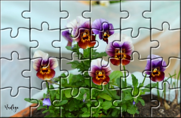 "N° 19 PFS "" Effet Puzzle "" - Page 2 Y616"