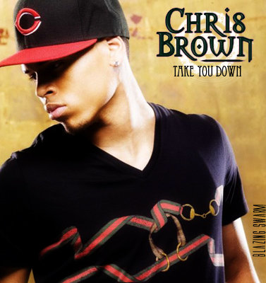 Chris Brown - Take You Down (2013) [Multi]