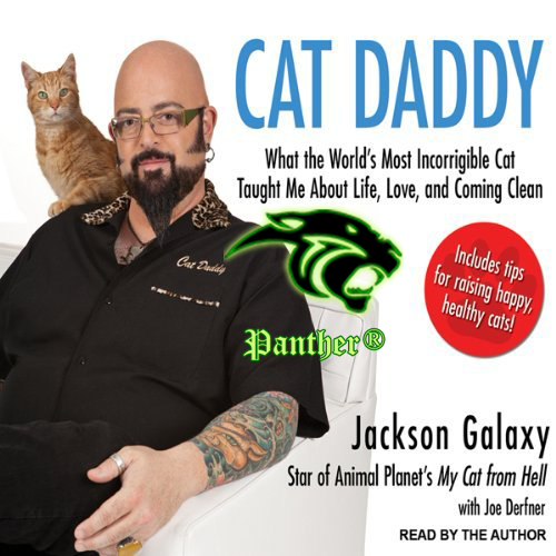 Cat daddy what the worlds most incorrigible cat taught me for Jackson galaxy phone number