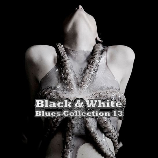 Black & White Blues Collection 13 [Multi]